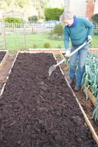 spreading the compost in 2015