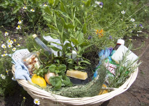 cropped-herb-basket1.jpg
