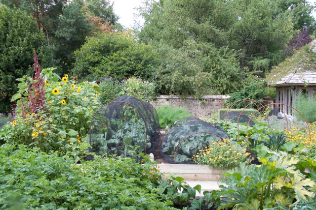 A kitchen garden on a private estate which I ran