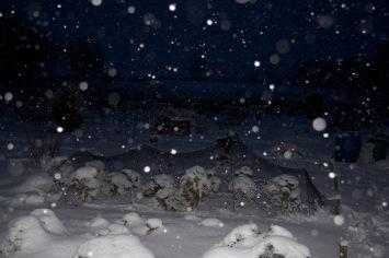 snow!