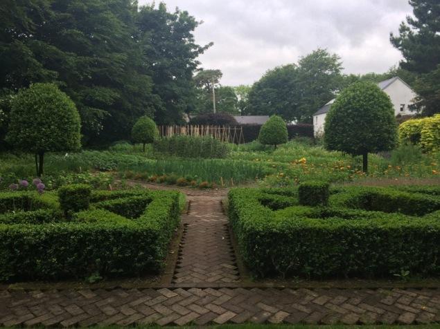 Ballymaloe small kitchen garden