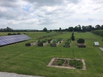 Solar panels and raised veg beds
