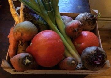winter veg