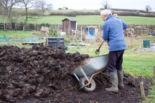 Charles filling the wheelbarrow