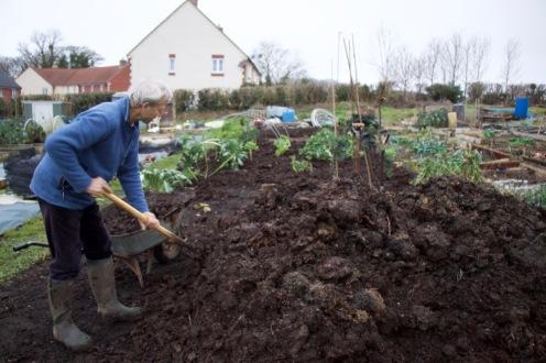 Mulching the plot