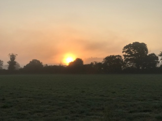 Dawn across the fields between Alhampton and Bruton